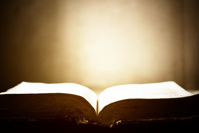 Bible-prophecy-Revelation